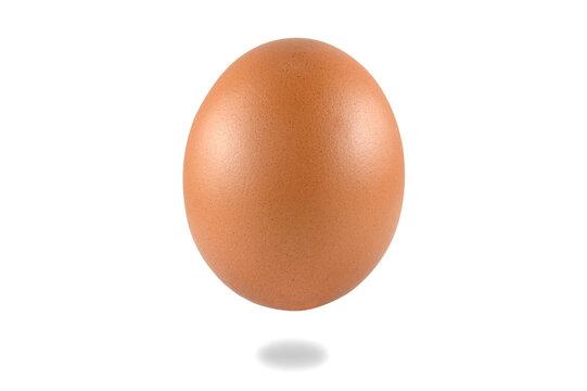 Food Art, egg on a white background