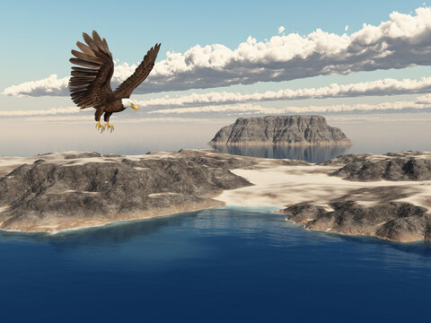 Seeadler über einer Insellandschaft