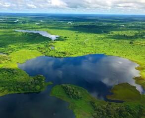 Fototapeta Vista Aárea do Pantanal Matogrossense - Brasil.