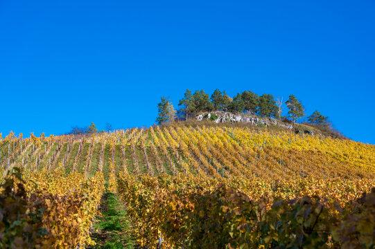 Struempfelbach - Vineyards at Weinstadt region - beautiful landscape in autum close to Stuttgart, Baden-Wuerttemberg, Germany