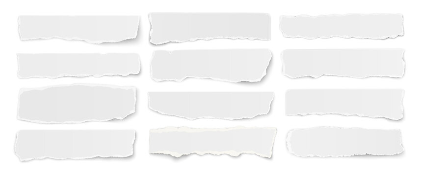 Horizontal set of torn long pieces of paper isolated on a white background.
