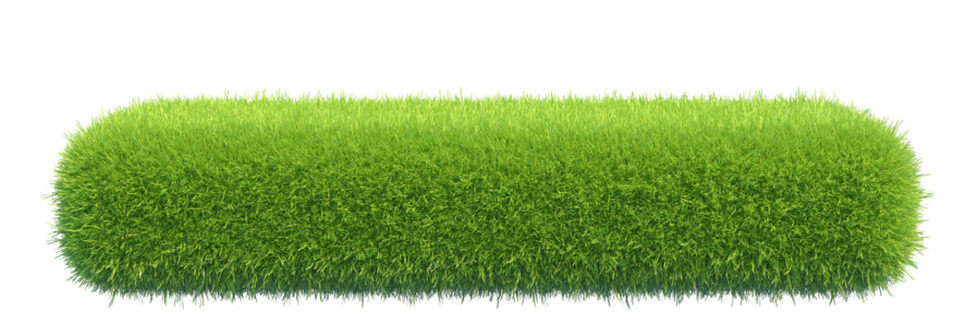 Grass box isolated on white background, 3d rendering.