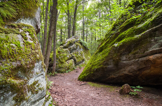 Thunder Rocks in Allegany State Park