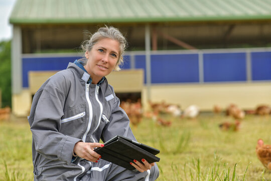 Female farmer analysing the growth of her chicken breeding on her tablet