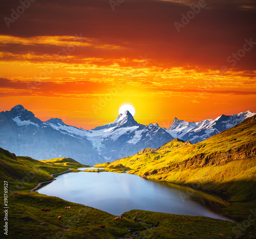 Wall mural Majestic sunset over the Grindelwald Valley in the Swiss Alps. Location place of Bachalpsee lake, Switzerland.