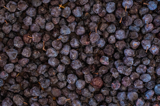Closeup Image of Dried Blueberries