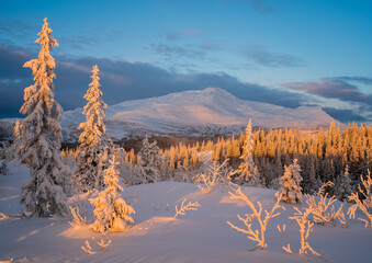 Beautiful winter landscape view during sunset