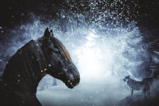 Schwarzes Pferd mit Wölfen