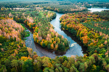 Stunning view of colorful forest and turning river in autumn