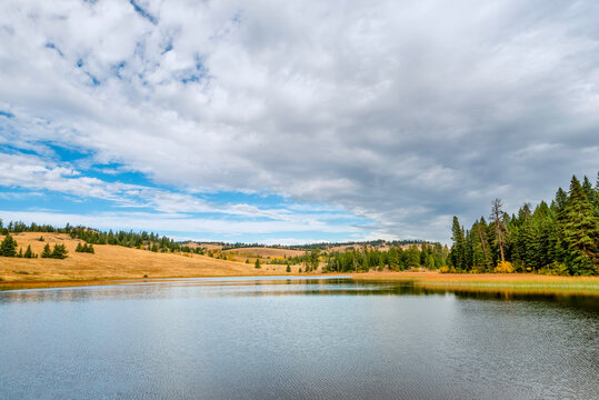 Lake near yellow hills and green forest on a sunny autumn day