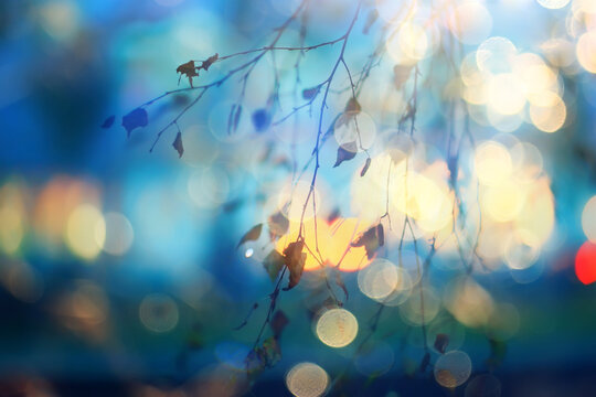 autumn abstract bokeh background, new bright october blurred