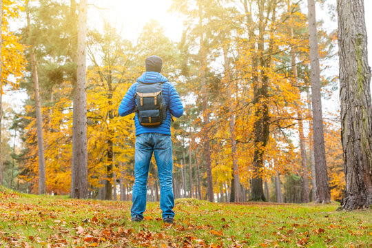 Man standing in the forest with orange autumn trees and leaves - Young man alone in a remote wood, isolating and escaping from city and busy life - lifestyle and nature