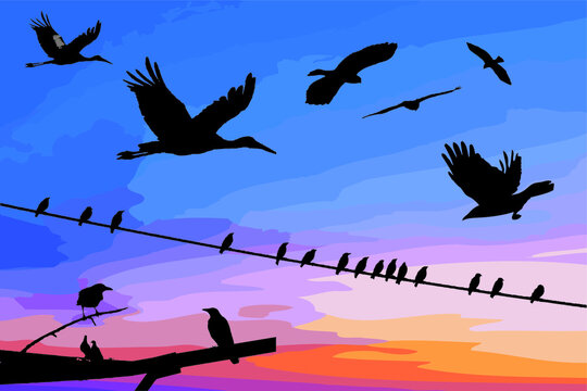 Collection of 9 silhouette of birds