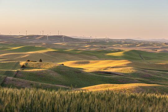 Wind Turbines farm in rolling wheat field in in Palouse region, Washington, USA.
