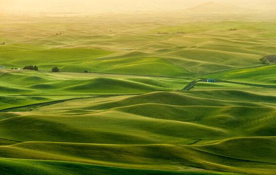 Beautiful landscape of crop fields in the Palouse region, Washington, USA
