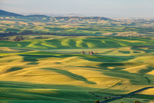 Red barn in beautiful rolling hill countryside landscape in Palouse, Washington, USA in the morning.