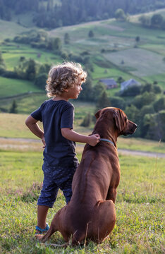 Curly boy and big dog sitting together
