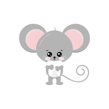 Cute mouse hold baby tooth in paws isolated on white bckground. Funny little mice boy took milk tooth concept. Flat design adorable rat cartoon dental character vector illustration.