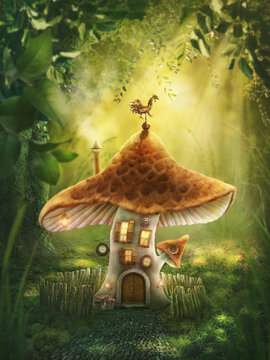 Magic mushroom home