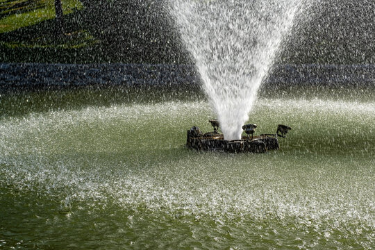 Water fountain with slashing water in a pond