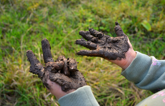 Girl showing muddy hands outdoors