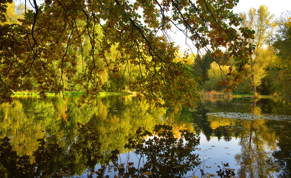Scenic autumn scene outdoor with colorful trees sourrounding a lake