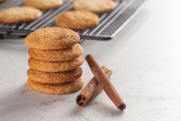 Classic Snickerdoodle Cookies on a Marble Kitchen Countertop