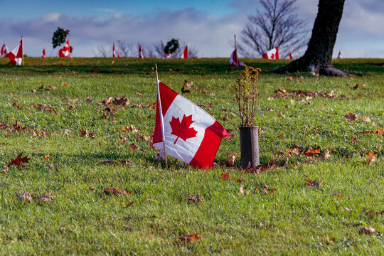 Canadian Flag For Veterans at Local Grave Site - Canadian flag arranged on the side of a hill for Remembrance Day at a local Nova Scotia gravesite for a veteran who served in the Canadian Armed Forces