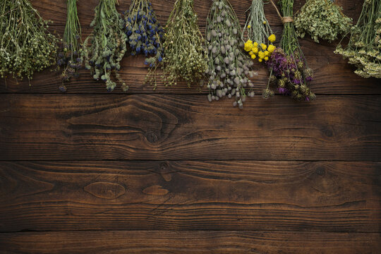 Medicinal plants bunches on brown wooden board. Top view, flat lay. Alternative medicine.