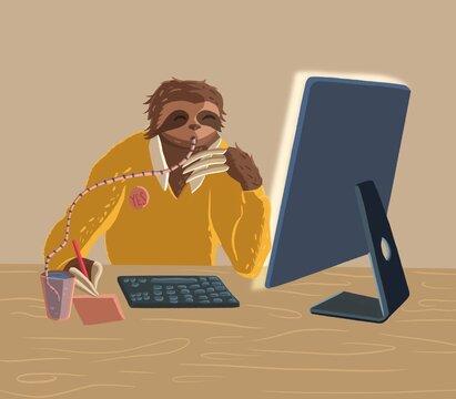 Sloth working on computer