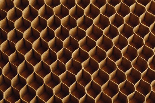 honeycomb cells of cardboard stiffening rib background