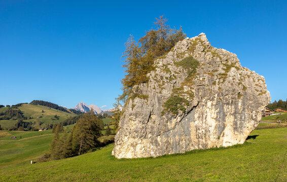 Grosser Fels auf der Seiser Alm, Alpe di Siusi, Südtirol