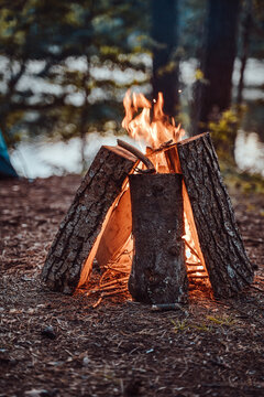 Peaceful and romantic forest in summer time and burning bonfire in daytime. Vacation and travelling.