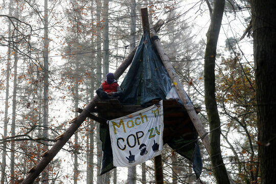 A protester sits on a tree house to block the way for the extension of the A49 motorway, in a forest near Stadtallendorf