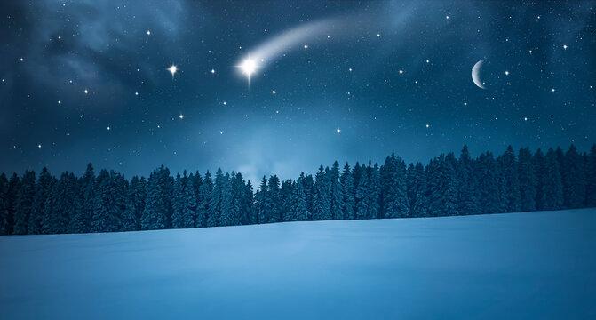 Sternschnuppe in einer  Kalten Winternacht im Wald