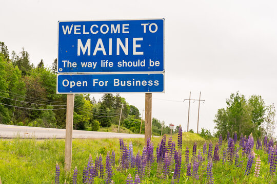 Welcome to Maine Roadside Sign