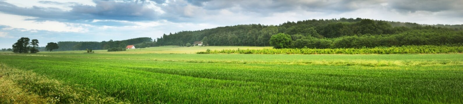 Picturesque panoramic scenery of the green agricultural field, country house and forest hills in the background. Osnabruck, Germany. Idyllic rural scene. Atmospheric spring landscape