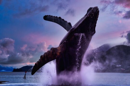 Juneau, Alaska, United States of America. Statue of a Big Wale jumping out from water in a small touristic town. Dramatic Sunset Sky