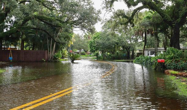 Fort Lauderdale residential neighborhood street floods from Tropical Storm Eta.