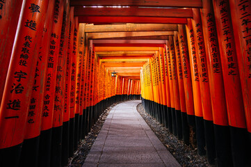 Thousands of red torii gates at Fushimi Inari Taisha Shrine in Kyoto, Japan