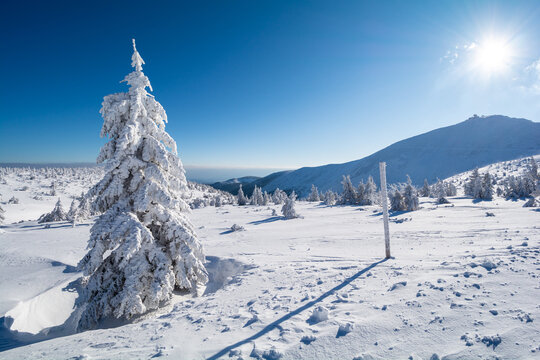 winter landscape in Giant mountains in Poland