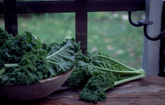 Green Kale on Rustic wooden bowl and table on  windows licht background