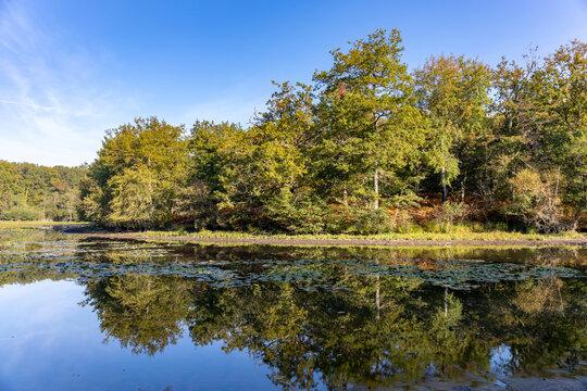 Loire Valley Countryside - near Langeais - France