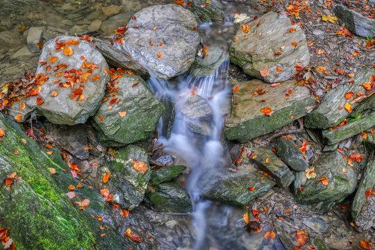 Bach und Herbstlaub auf dem Schluchtenpfad bei Winterberg