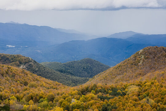 Autumn picture from Spanish mountain Montseny