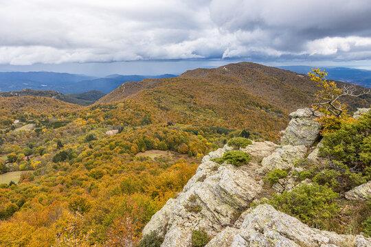 Autumn picture from Spanish mountain Montseny, near Santa fe del Montseny, Catalonia
