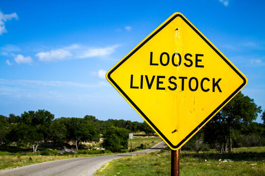 Loose Livestock