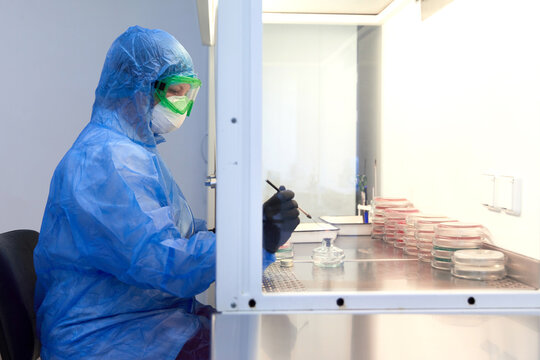 female science researcher in protective uniform and equipment works with petri dish in laboratory