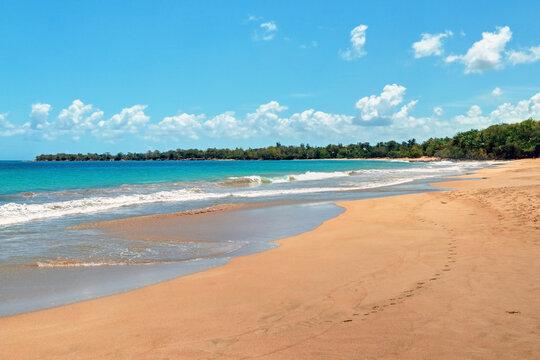 Guadeloupe Deshaies la plage de la grande anse