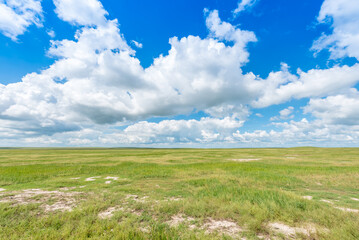 Blue sky and white clouds on the grassland, beautiful grassland scenery